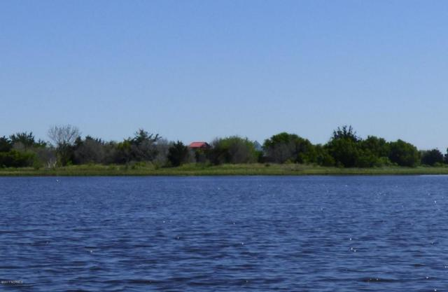 1 John Jones Island, Cedar Point, NC 28584 (MLS #100104195) :: Courtney Carter Homes