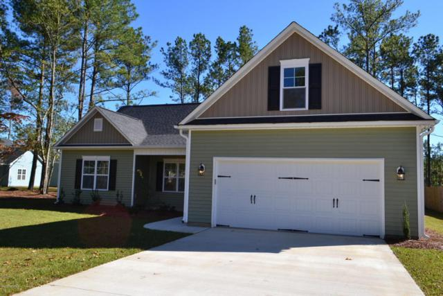 245 Bronze Drive, Rocky Point, NC 28457 (MLS #100104908) :: The Keith Beatty Team