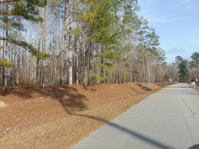 300 Freshwater Dr, Blounts Creek, NC 27814 (MLS #100105142) :: Century 21 Sweyer & Associates