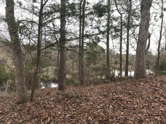 Lot 253 Lakeview Drive, Hampstead, NC 28443 (MLS #100105146) :: Harrison Dorn Realty