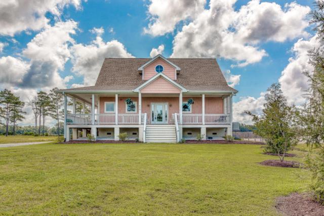 410 Madewood Lane, Newport, NC 28570 (MLS #100105172) :: Courtney Carter Homes