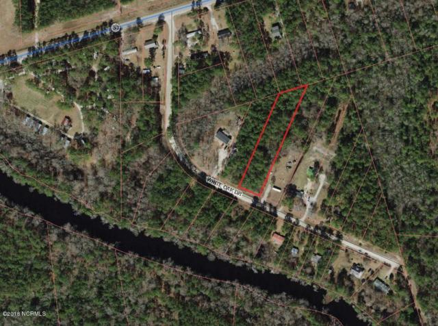 Lot 12 White Oak Dr, Burgaw, NC 28425 (MLS #100105507) :: Century 21 Sweyer & Associates