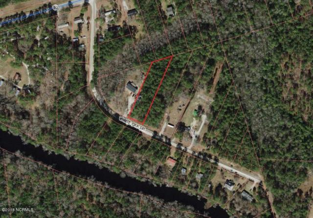 Lot 11 White Oak, Burgaw, NC 28425 (MLS #100105510) :: Century 21 Sweyer & Associates