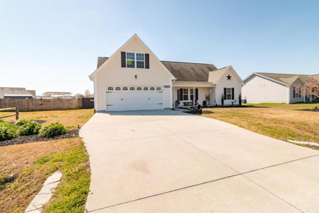 155 Christy Drive, Beulaville, NC 28518 (MLS #100105667) :: Courtney Carter Homes