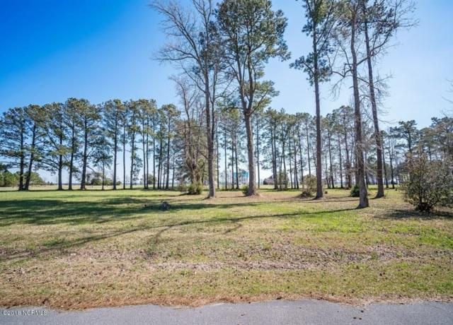4005 Tarpon Drive, Oriental, NC 28571 (MLS #100106355) :: Coldwell Banker Sea Coast Advantage
