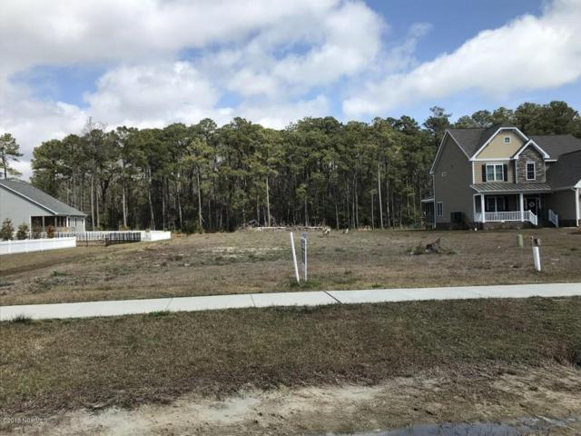 1118 Blair Farm Parkway, Morehead City, NC 28557 (MLS #100106522) :: RE/MAX Essential