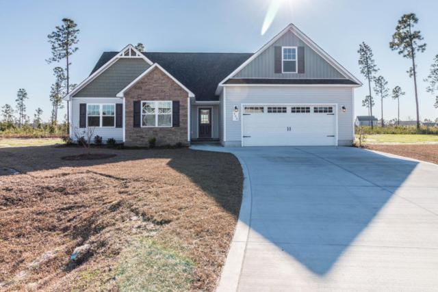 103 Rose Trellis Way, Hubert, NC 28539 (MLS #100106706) :: Harrison Dorn Realty