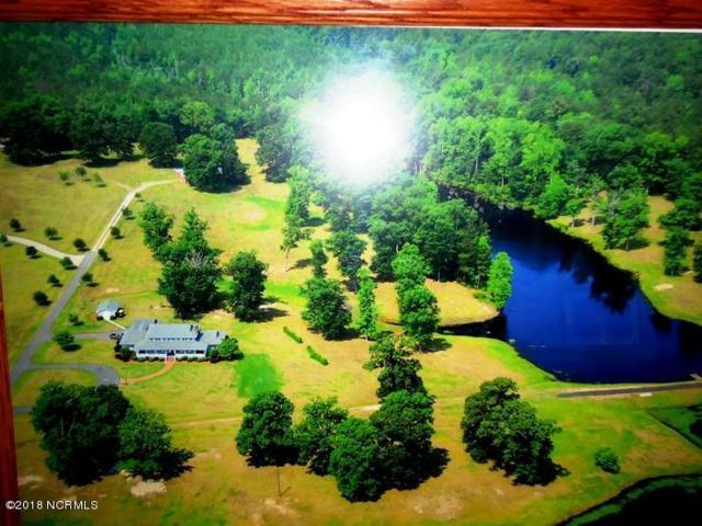 302 Westwood Drive, Elizabethtown, NC 28337 (MLS #100106713) :: David Cummings Real Estate Team