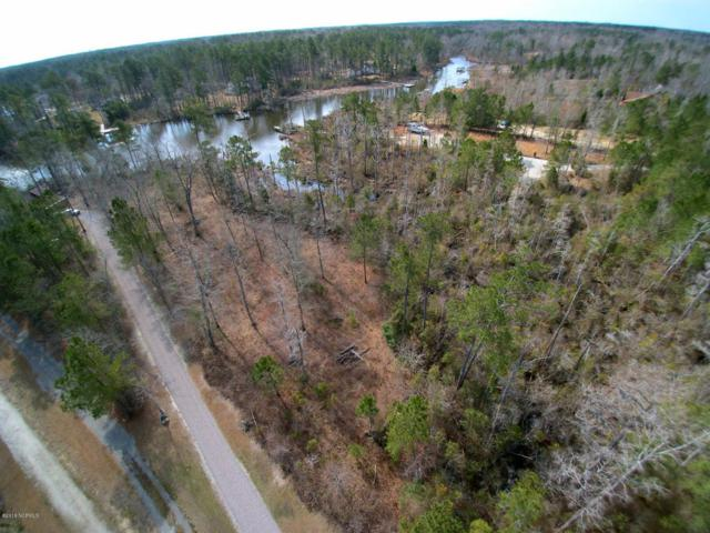 Lot 22 Long Point, Chocowinity, NC 27817 (MLS #100106776) :: The Keith Beatty Team