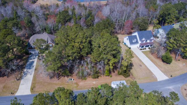 159 Marina Wynd Way, Sneads Ferry, NC 28460 (MLS #100107226) :: Courtney Carter Homes