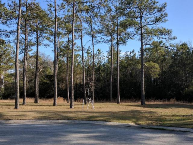 3393 Turnbuckle Lane, Southport, NC 28461 (MLS #100107750) :: Berkshire Hathaway HomeServices Myrtle Beach Real Estate