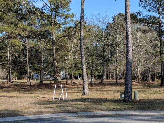 3399 Turnbuckle Lane, Southport, NC 28461 (MLS #100107751) :: Century 21 Sweyer & Associates