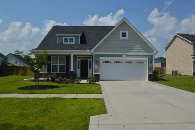 405 Zircon Court, Jacksonville, NC 28546 (MLS #100107959) :: Harrison Dorn Realty