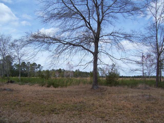 0 W Waverly Drive, Burgaw, NC 28425 (MLS #100108171) :: Courtney Carter Homes