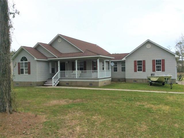 205 Straits Drive, Beaufort, NC 28516 (MLS #100109465) :: RE/MAX Essential