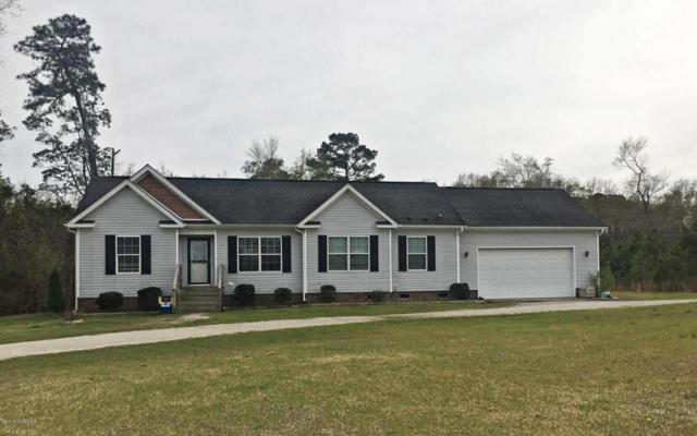 235 Mewborn Drive, Beulaville, NC 28518 (MLS #100110193) :: The Keith Beatty Team