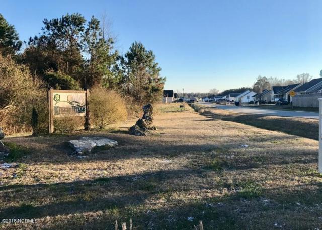 249 Deer Haven Drive, Richlands, NC 28574 (MLS #100110714) :: Berkshire Hathaway HomeServices Prime Properties