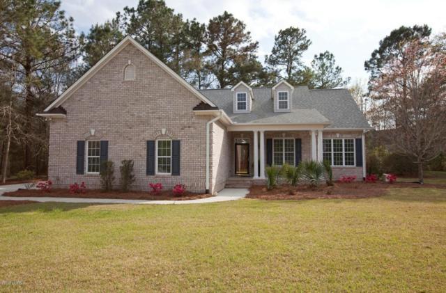 810 Royal Tern Drive, Hampstead, NC 28443 (MLS #100110806) :: Berkshire Hathaway HomeServices Prime Properties