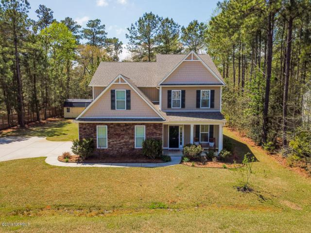310 Majestic Oaks Drive, Hampstead, NC 28443 (MLS #100110983) :: The Keith Beatty Team