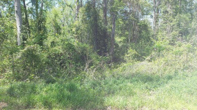 2 Petrel Court, Carolina Shores, NC 28467 (MLS #100111489) :: The Oceanaire Realty
