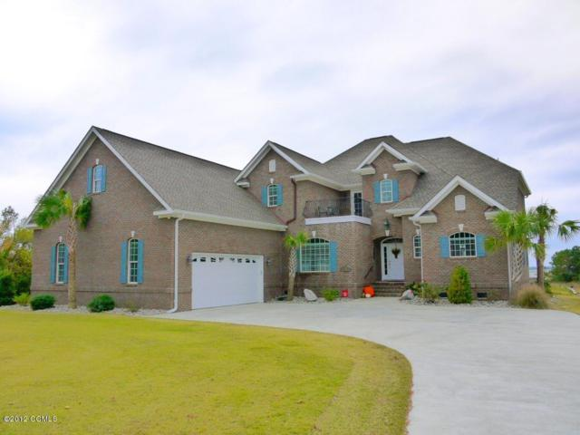 228 Royal Oaks Court, Cedar Point, NC 28584 (MLS #100111608) :: Courtney Carter Homes