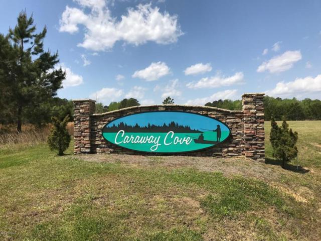 276 Portside Drive, Arapahoe, NC 28510 (MLS #100111755) :: The Keith Beatty Team