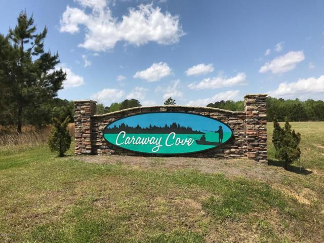 307 Portside Drive, Arapahoe, NC 28510 (MLS #100111757) :: The Keith Beatty Team
