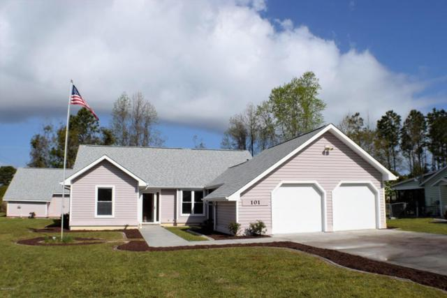 101 Driftwood Lane, Hampstead, NC 28443 (MLS #100112116) :: RE/MAX Essential