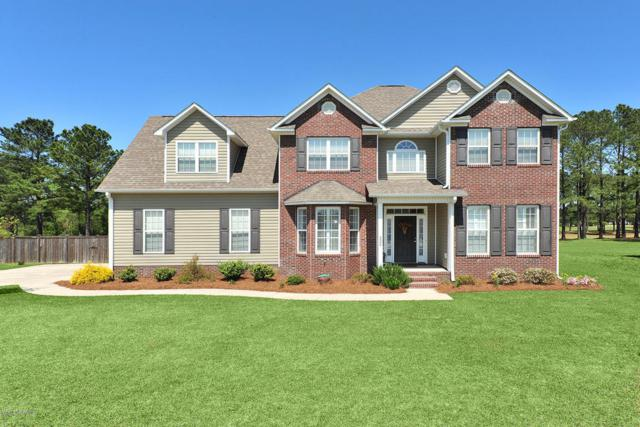 224 S River Drive, Jacksonville, NC 28540 (MLS #100112123) :: RE/MAX Elite Realty Group