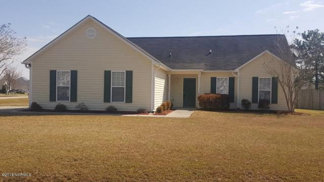 401 Arabian Lane, Swansboro, NC 28584 (MLS #100112136) :: RE/MAX Elite Realty Group