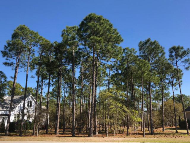 2564 Hillsborough Drive, Southport, NC 28461 (MLS #100112238) :: SC Beach Real Estate