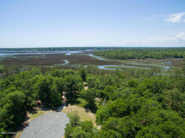 692 Mill Harbor Pointe SE, Bolivia, NC 28422 (MLS #100112242) :: Harrison Dorn Realty