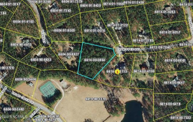 65 Sandpiper Bay Road, Washington, NC 27889 (MLS #100112332) :: RE/MAX Essential