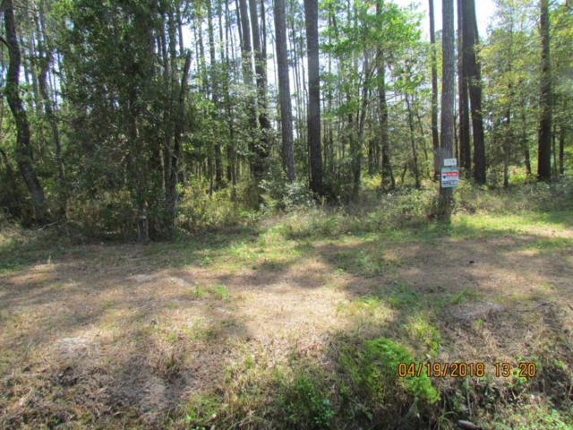 774 Straits Road, Gloucester, NC 28528 (MLS #100112371) :: RE/MAX Essential