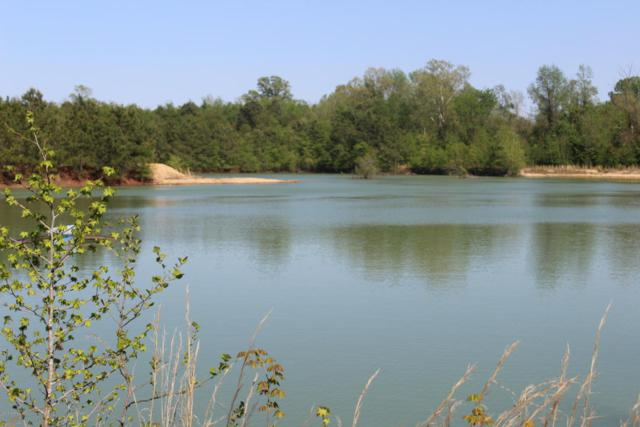 000 Stevens Mill Road, Goldsboro, NC 27530 (MLS #100112375) :: RE/MAX Essential