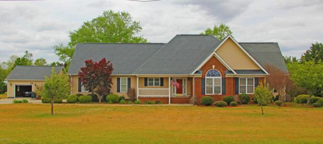 3176 S Hwy 903, Snow Hill, NC 28580 (MLS #100113020) :: The Oceanaire Realty