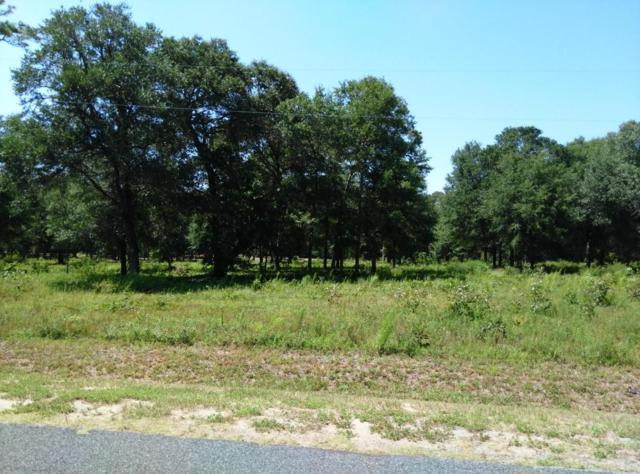 3668 Windy Point Road SW, Supply, NC 28462 (MLS #100113146) :: Harrison Dorn Realty