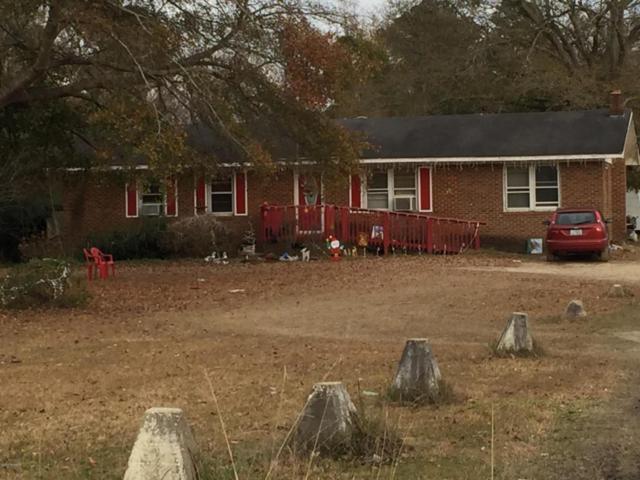 18 Hampton Drive, Castle Hayne, NC 28429 (MLS #100113194) :: Harrison Dorn Realty