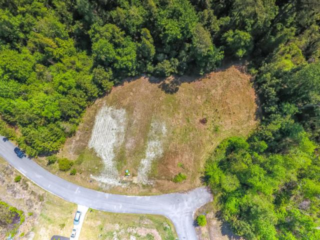 3000 Evening Road, Castle Hayne, NC 28429 (MLS #100113769) :: RE/MAX Elite Realty Group
