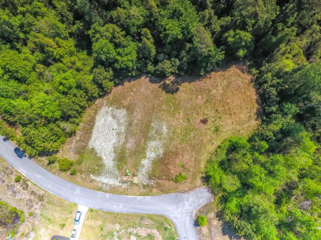 3004 Evening Road, Castle Hayne, NC 28429 (MLS #100113772) :: RE/MAX Elite Realty Group