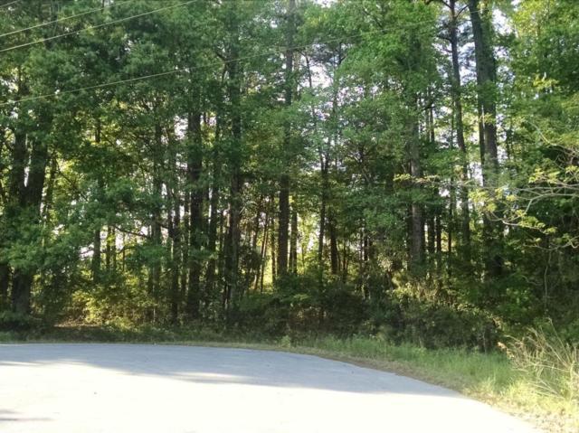 Lot 1 Beech Tree Road, Jacksonville, NC 28546 (MLS #100113820) :: Courtney Carter Homes