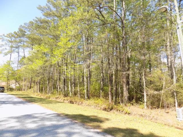 2 Gumwood Drive Drive, Carolina Shores, NC 28467 (MLS #100113836) :: Courtney Carter Homes