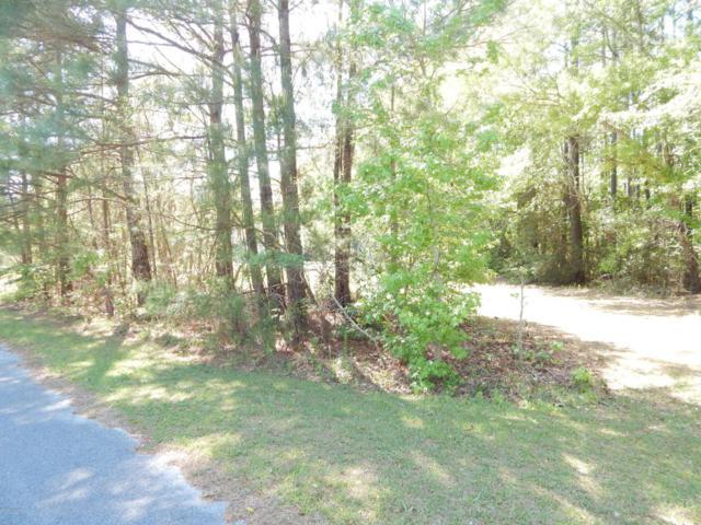 404 Stoneybrook Drive, Swansboro, NC 28584 (MLS #100113870) :: The Bob Williams Team
