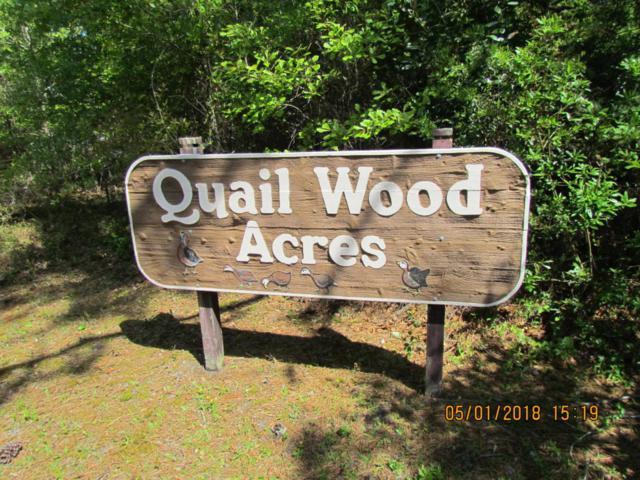 212 Quailwood Court, Cape Carteret, NC 28584 (MLS #100114054) :: Courtney Carter Homes