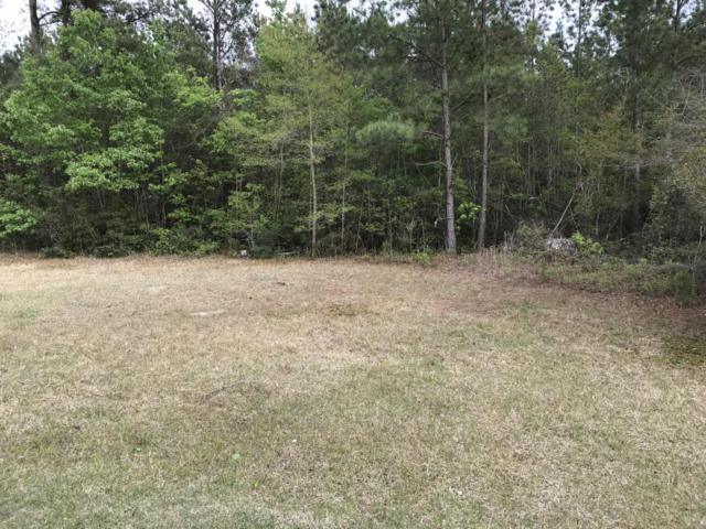 54 Woodlief Drive, White Lake, NC 28337 (MLS #100114113) :: Harrison Dorn Realty