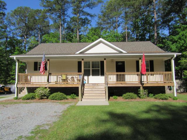 601 Peterson Place, Oriental, NC 28571 (MLS #100114238) :: Donna & Team New Bern