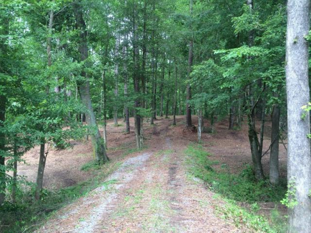 Lot 82 Victoria Drive, Chocowinity, NC 27817 (MLS #100115848) :: Century 21 Sweyer & Associates