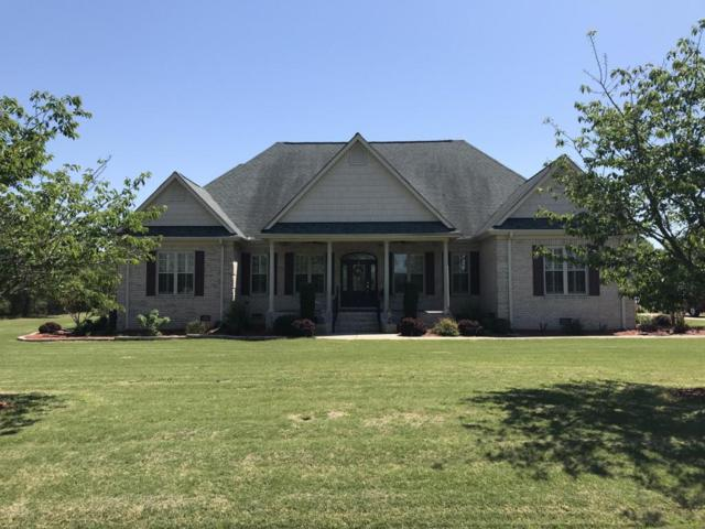 1053 Timberlake Drive, Clinton, NC 28328 (MLS #100116013) :: RE/MAX Essential