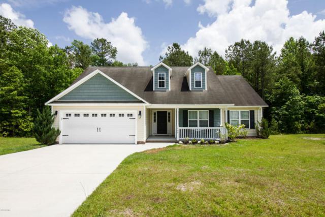 300 Pebble Island Lane, Jacksonville, NC 28546 (MLS #100116716) :: Berkshire Hathaway HomeServices Prime Properties