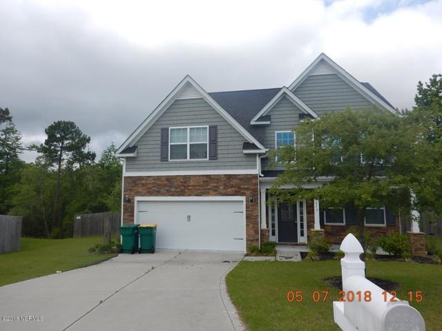 202 Gannet Court, Swansboro, NC 28584 (MLS #100116942) :: Courtney Carter Homes